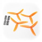 5x3 Oranges tripales(deux paires)